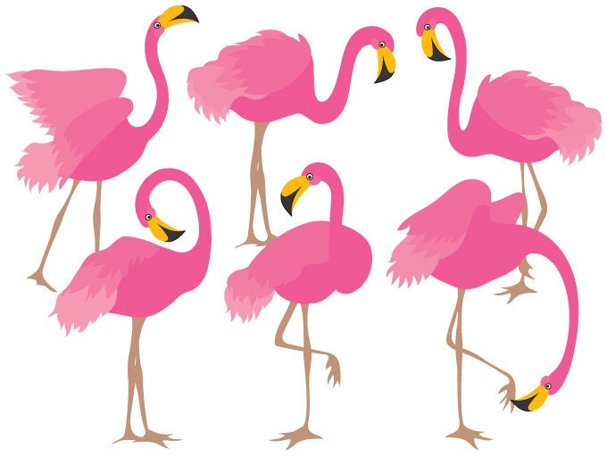 flamingo clipart digital vector flamingo bird exotic rh etsy com flamingo clip art free flamingo clipart free