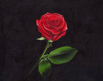 Original painting, Red Rose on black background