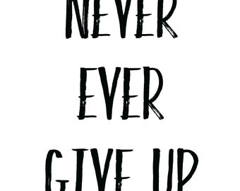Never Give Up Inspirational Quote Wall Art Print Decor Image - Unframed Poster