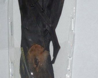 SCOTOPHILUS KUHLII Lesser Asiatic Yellow bat Real Hanging Bat Taxidermy