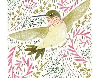 Calliope Hummingbird Art Print - square digital illustration by Stephanie Fizer Coleman