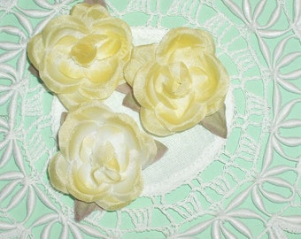 Pale Yellow Millinery Roses