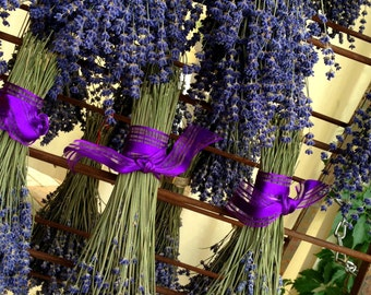 Dried Lavender Bouquet: Vibrantly Colored English Lavender, Bundle, Bunch, Wedding