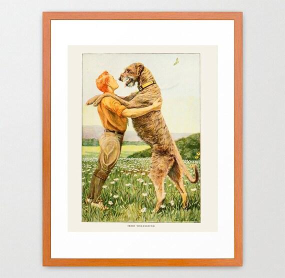 Irish Wolfhound Dog Art Prints Victorian Illustration Vintage Prints Antique Nature Print Natural History Art