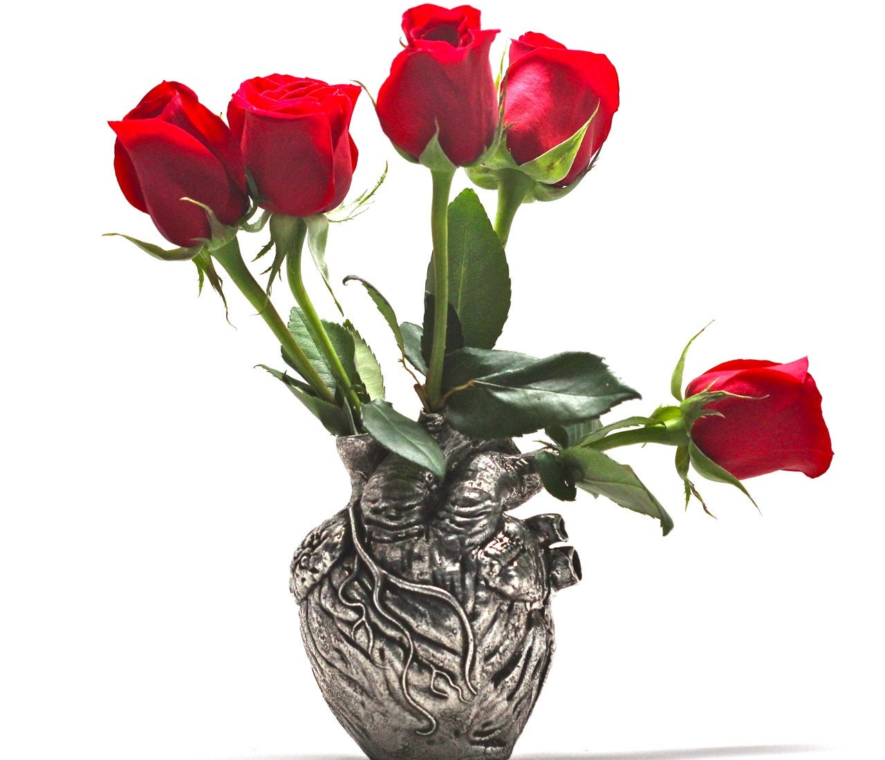 Anatomical heart vase anatomical heart housewares from blue zoom reviewsmspy
