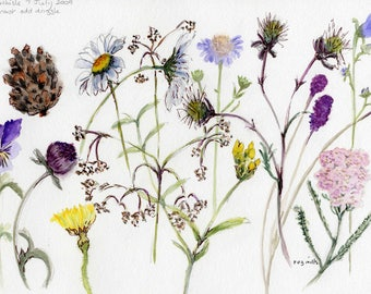 Haltwhistle Flowers - Greetings card