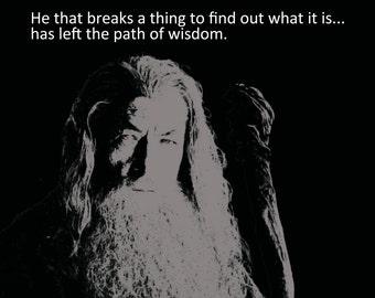 "Lord of The Rings Illustration: ""He that breaks a thing..."" Gandalf 8x10"" screen print art Hobbit Bilbo"