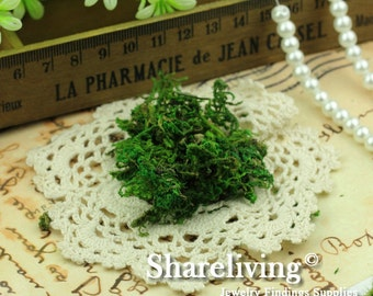1 Lots of DIY Moss for Glass Bottle Decoration HCS001