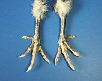 Decor - Talisman - 2 Natural Feet Charms