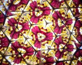 Kaleidscope - DIY kaleidoscope - Flower kaleidoscope - Flowerscope summer