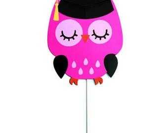Graduation Owl Party Centerpiece Stick - Cake Topper, Owl Graduation