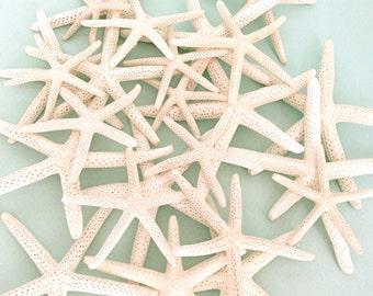 "Starfish - 25 - 2""-3"" *Top Quality* bulk starfish star fish beach decor"