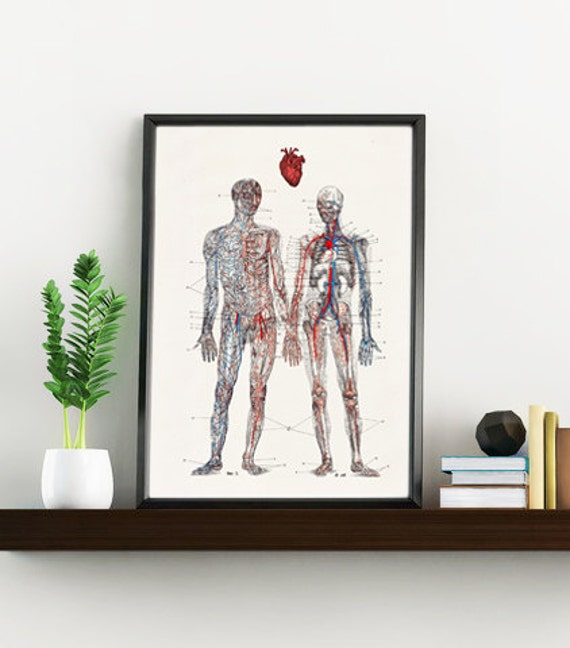 Love you with all my heart, Anatomy art, Anatomical art, Wall art, Wall decor, Anatomy, Medical gift, Human anatomy, Wholesale,  SKA167WA4