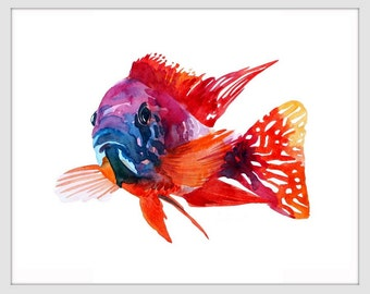 ORIGINAL Watercolor Fish Painting Red Cichlid Fish Art Print by Tara Tet