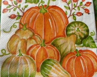 Napkin squash and pumpkins