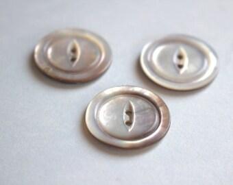 Gray Mist Shell Button x 3