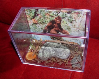 "Bigfoot/Sasquatch  ""Proof of Existence Display! Own a Cast of His/Hers Footprint Today!!"