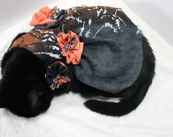 Elegant Dress for Cat