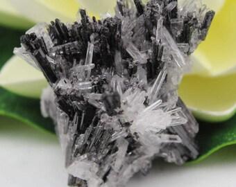 Hubnerite and Quartz Crystal Cluster Mineral Specimen HUBN1