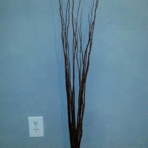 Dark Brown Branches 3 - 4 ft - Qty 15