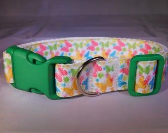 "1"" Multicolour Butterfly Collar"