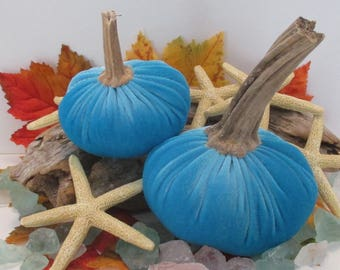 Seaside Turquoise Blue Pair of Velvet Pumpkins with Real dried stems