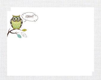 Owl Flat Notes