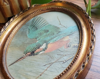 Small Gold Oval Frame // Vintage // Miniature // Hummingbird // Oval Picture