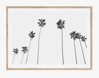 Palm Tree Print, Printable Art, Black and White Prints, Minimalist Living Room Print, Modern Office Wall Decor, Instant Download, Tropical