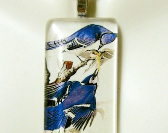 Blue Jay bird pendant and chain - BGP02-019