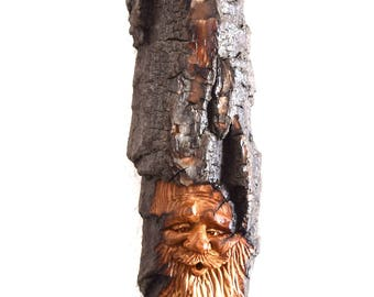 2017 Alaskan Cottonwood Bark Wood Spirit #59