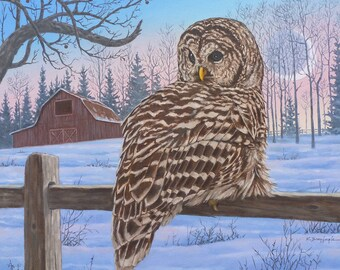 Barnyard Owl, PRINTABLE ART, Print Art, Gallery Quality Print, Night Owl, Owls, Owl, Moon, Barn, Dusk, Fence, Wildlife, Winter, Snow