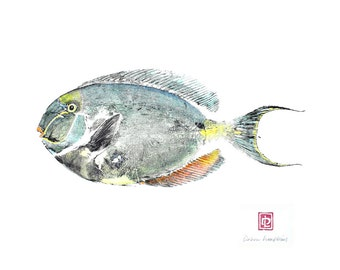 8 x 10 Hawaiian Fish Print in Black Mat Unicorn fish Gyotaku