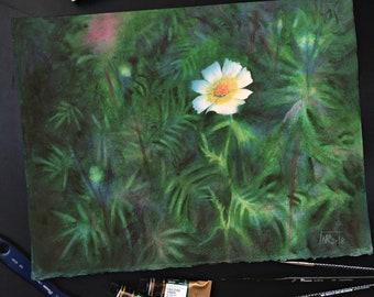 Cosmea painting. Cosmos Flowers original watercolour painting. Watercolour floral painting, botanical painting, floral art.