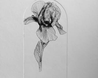 Iris Flower Print, Iris flower, Flower etching, flower illustration, iris flower print, intaglio print, botanical illustration, Iris print