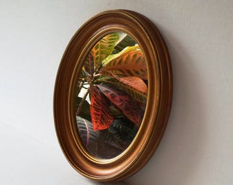 Vintage Oval Hanging Mirror