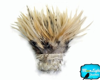 Rooster Feathers, 1 Yard - NATURAL CREAM Strung Chinese Rooster Saddle Wholesale feathers (bulk) : 3626