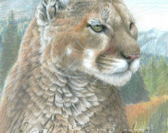 Mountain Lion Cat Art COUGAR2 Original Artwork by Carla Kurt