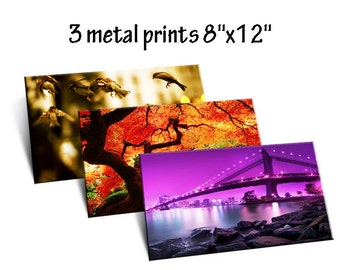 "3 x Photo to Metal Prints 8"" x 12"""