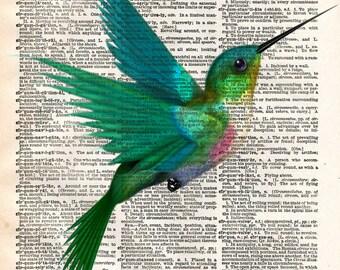 Hummingbird art print, bird art, cute humming bird drawing, vintage dictionary print