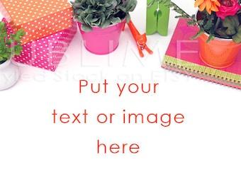 Styled Stock Photography / Styled Desktop / Product Styling / Digital Background / Styled Photography / JPEG Digital Image / StockStyle-355