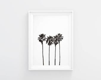 Palm Tree Poster Print, Palm Tree Wall Art, Palm Wall Decor, Palm Print, Palm Wall Art, Palm Printable, Minimalist Poster, Botanical print
