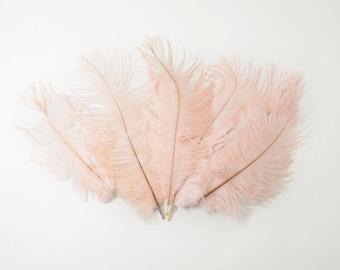"Petite Ostrich Drab Feathers - Blush Pink, 4-8"" (12pcs)"