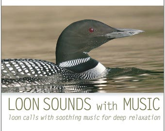 Loon Sounds with Music (CD) On Golden Pond Loon Calls and Sounds of Loons