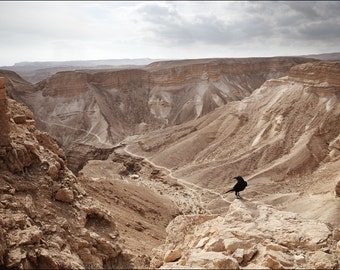 Judaean Desert - View from Masada - Color Photo Print - Fine Art Photography (IS20)