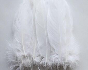 Goose Feathers, White Goose Satinettes Feathers Crafting Wedding Decoration Halloween Costume SKU: 7I13