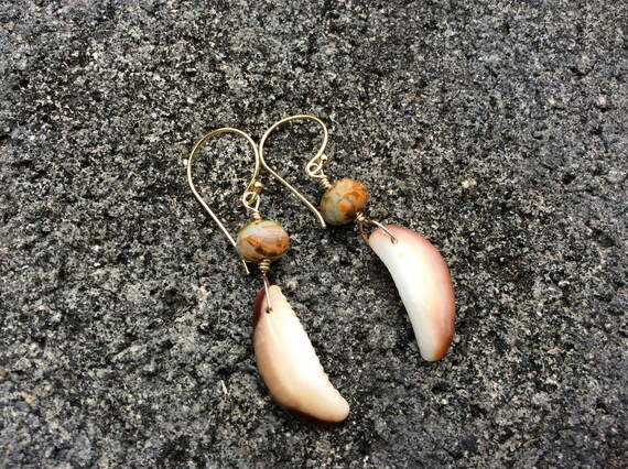 Hawaiian Cowrie Shell, Multi Colored Czech Glass Rondelle, 14k Gold Filled  Earrings
