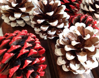 Painted Pinecones/White Pine Cones/Red Pinecones/Valentines Day Decor/Wedding Decor/Rustic Wedding/Pinecone Decor/Mantel/Fireplace Decor