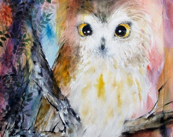 Original Watercolor Owl Painting Saw Whet Owl Painting Bird Artwork Saw whet 11x12.4 in