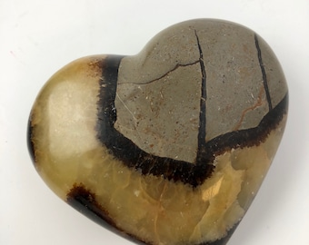 Septaria heart, dragon stone